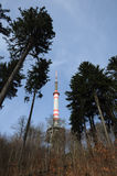 Tschechische mittlere Berge - Bukova-hora Stockfoto