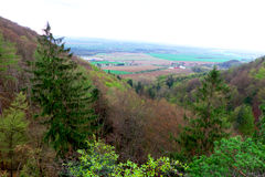 Tschechische Natur - Landschaft Stockbilder