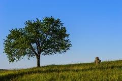 Tschechische Paradieslandschaft Stockbilder