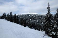 Tschechischer Berg - Praded Stockfotografie
