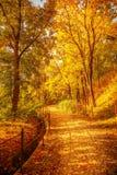 Tschechischer Herbst Stockfotografie