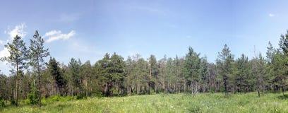 Tscheljabinsk-Stadtgrat Lizenzfreies Stockfoto