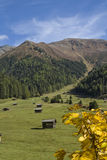 Tschey meadow in Tyrol Stock Image