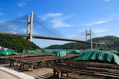 Tsing Ma bridge. Take a photo at hong kong Ma wai July 10th, 2008 Royalty Free Stock Photo
