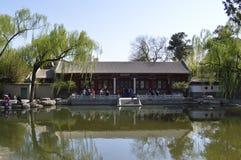 Tsinghua Hawthorn Stock Image