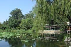 Tsinghua University. The pond in Tsinghua University, Beijing, China Stock Image