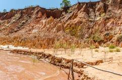 Tsingy σε Ankarana Μαδαγασκάρη Στοκ Εικόνες