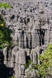 The Tsingy of Ankarana Royalty Free Stock Photo