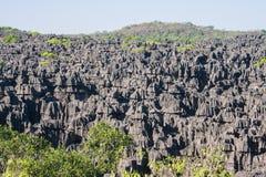 The Tsingy of Ankarana. Northern Madagascar Royalty Free Stock Image