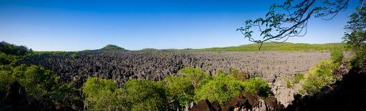 Tsingy of Ankarana Stock Photography