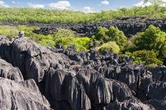 The Tsingy of Ankarana Royalty Free Stock Image