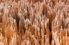 Tsingy in Ankarana Madagaskar Stockfotografie