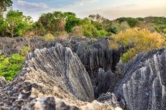 Tsingy close up panorama Royalty Free Stock Photo