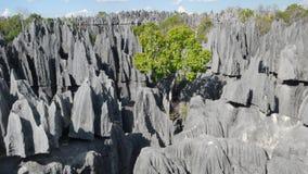 Tsingy de Bemaraha。马达加斯加 免版税库存照片