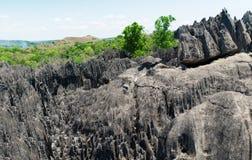 Tsingy de Bemaraha Запас стоковые изображения
