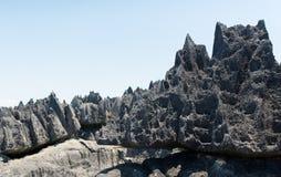 Tsingy de Bemaraha Запас стоковая фотография