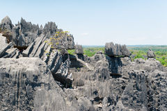 Tsingy de Bemaraha Запас стоковое изображение