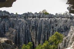 Tsingy DE Bemaraha Aardpark royalty-vrije stock fotografie