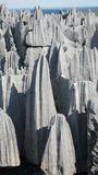 Tsingy de Bemaraha. Madagascar Stock Photography