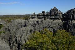 Tsingy de Bemaraha National Park, Madagascar royalty free stock photography
