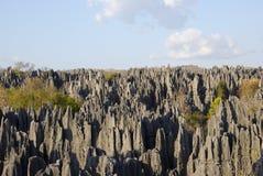 Tsingy DE Bemaraha National Park Unesco-Werelderfenis royalty-vrije stock foto's