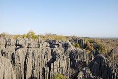 Tsingy de Bemaraha National Park. Unesco World Heritage Royalty Free Stock Photo