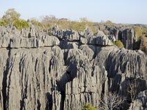 Tsingy de Bemaraha National Park. Unesco World Heritage Stock Image