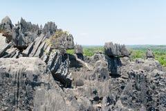 Tsingy de Bemaraha Reserva imagem de stock