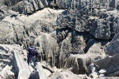 Tsingy DE Bemaraha Reserve royalty-vrije stock fotografie