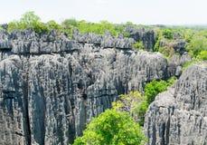 Tsingy DE Bemaraha Reserve royalty-vrije stock foto