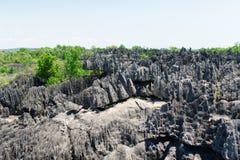 Tsingy de Bemaraha Reserve foto de archivo libre de regalías