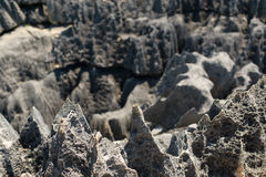 Tsingy DE Bemaraha Reserve royalty-vrije stock afbeeldingen