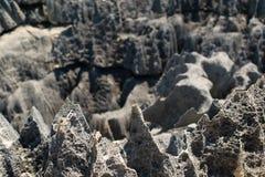 Tsingy de Bemaraha Reserve royalty free stock images