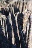 Tsingy de Bemaraha spikes Royalty Free Stock Image