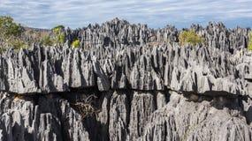 Tsingy de Bemaraha. Stock Images