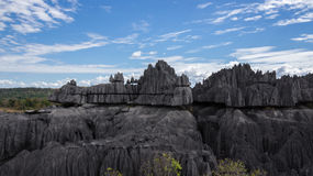 Tsingy de Bemaraha. Stock Photo