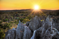 Tsingy de Bemaraha sunset Royalty Free Stock Image