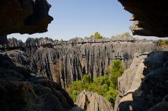 Tsingy de Bemaraha Typische Landschaft madagaskar Lizenzfreie Stockbilder