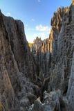 Tsingy geografi royaltyfri bild