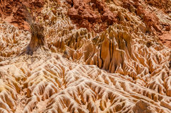 Tsingy i Ankarana Madagascar Arkivbild