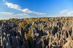 Tsingy landscape view Stock Image