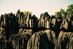 Tsingy Madagascar Royalty-vrije Stock Foto