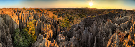 Tsingy Madagascar panorama Royalty Free Stock Images