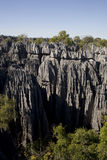 Tsingy National Park, Madagascar, Africa Stock Image