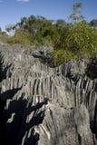 Tsingy nationalpark, Madagascar, Afrika arkivfoto