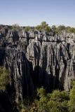 Tsingy nationalpark, Madagascar, Afrika Fotografering för Bildbyråer