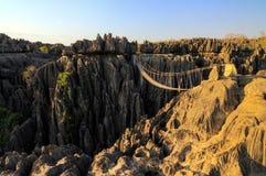 Tsingy ravinbro Arkivfoto