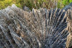 Tsingy rocks detail Stock Photography