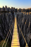 Tsingy rope bridge Royalty Free Stock Image