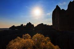 Tsingy silhouette tree Royalty Free Stock Photos